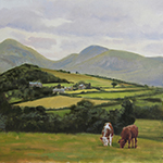 Cattle on the Mountains of Mourne